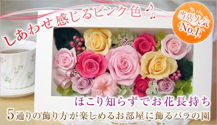 しあわせ感じるピンク色 当店人気No.1 ほこり知らずでお花長持ち 5通りの飾り方が楽しめるお部屋に飾るバラの園 プリザーブドフラワー
