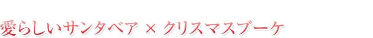 リザーブドフラワーアレンジメント 愛らしいサンタベア×クリスマスブーケ|花ガーデン(花garden)