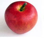かわいい表情の真っ赤なリンゴ|花ガーデン(花garden)