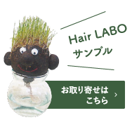 Hair LABO サンプル お取り寄せはこちら