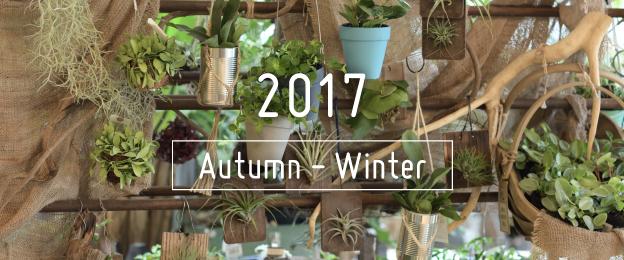 2017 Autumn-Winter