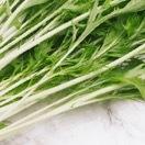 意外と使える簡単野菜