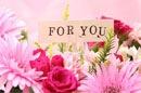 「花束 保存」で大切な人からの花束のプレゼントをいつまでも美しく末永く保存