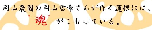 岡山農園の岡山 哲章さんが作る蓮根には、魂がこもっている。