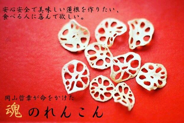安心安全で美味しい蓮根を作りたい。食べる人に喜んで欲しい。岡山哲章が命をかけた魂のれんこん