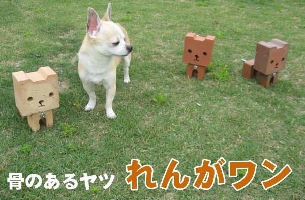 お庭の玉手箱 オリジナルレンガオーナメント骨のあるヤツ れんがワン送料無料2310円 お庭を飾るレンガ