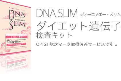 DNA SLIM�ʥǥ������̥����������˥������åȰ����Ҹ������å�
