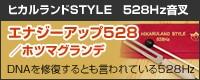 エナジーアップ528/ホツマグランデ