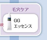 ナビジョン GGエッセンス