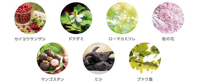 ドクダミ カモミール セイヨウサンザシ ブドウ葉