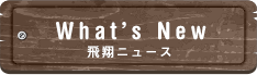 What's Newへ