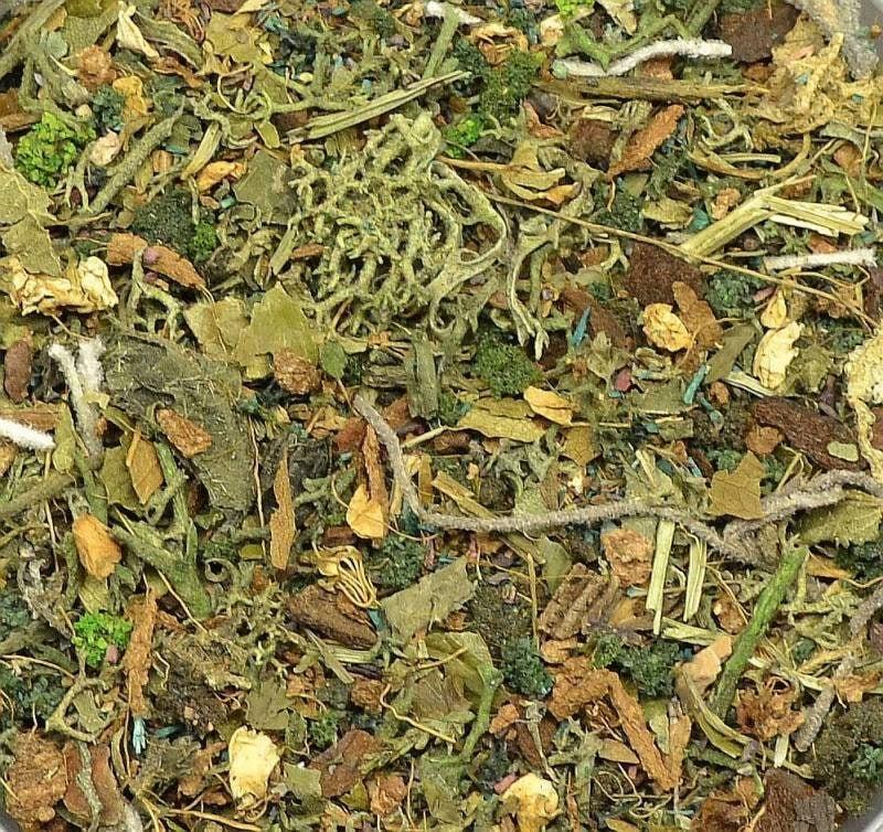 【新製品】DET02)地面素材セット(樹木の根元素材:暗めの色調)