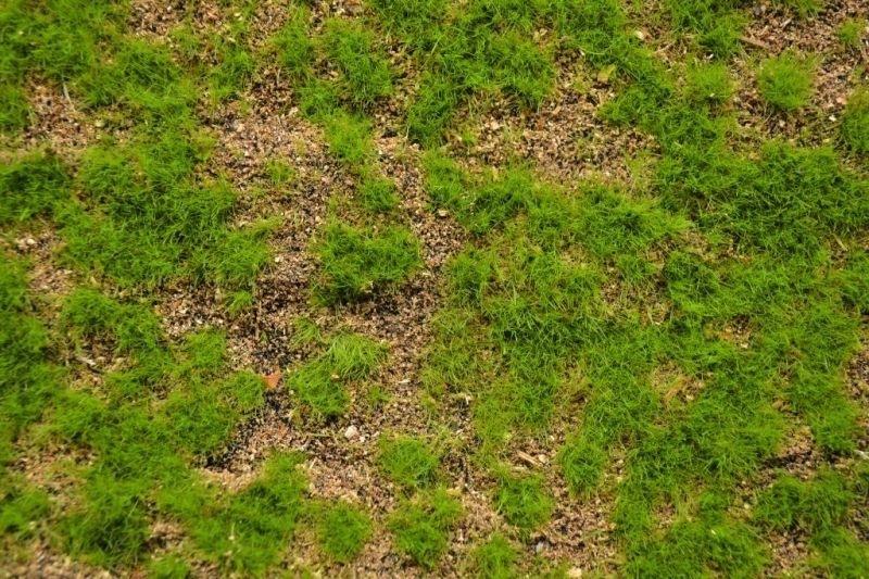 【新製品】MAT05)ランドスケープマット(野草の草原5)