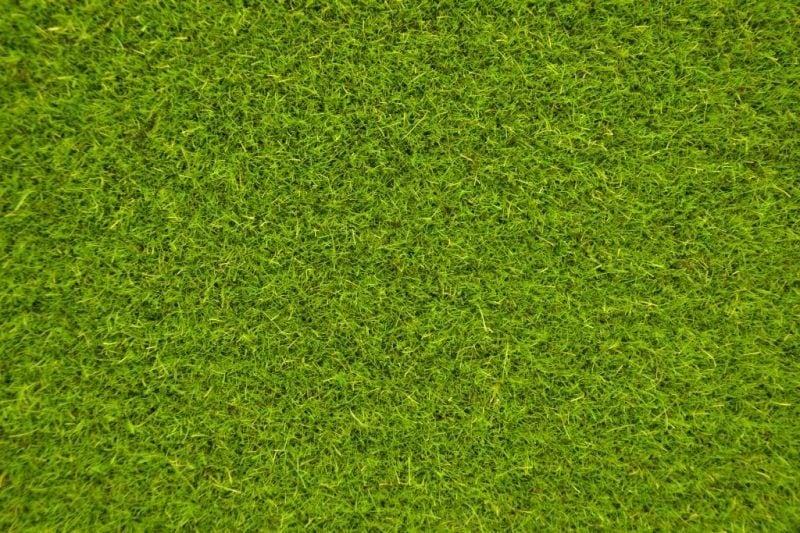 【新製品】MAT06)ランドスケープマット(刈り揃えられた草原)
