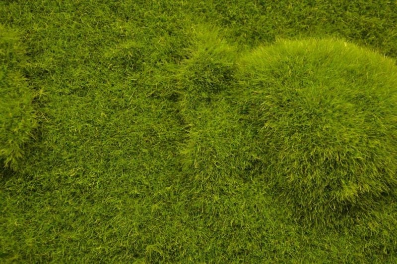 【新製品】MAT11)ランドスケープマット(起伏のある地面&背の揃った草原)