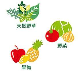 野草源酵素とは・・・野草・野菜・果物のこだわり