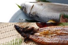 人気のサバ寿司とうなぎのセット