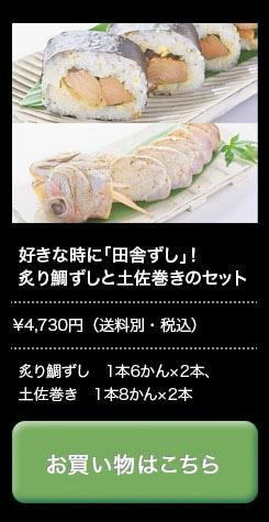 炙りたい寿司と土佐巻きのセット