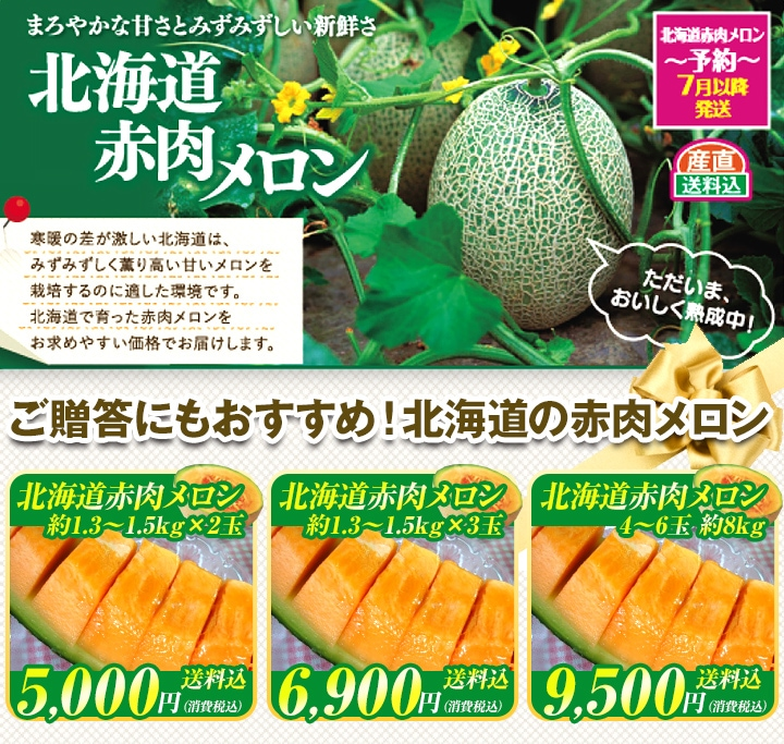 まろやかな甘さとみずみずしい新鮮さ「北海道赤肉メロン」