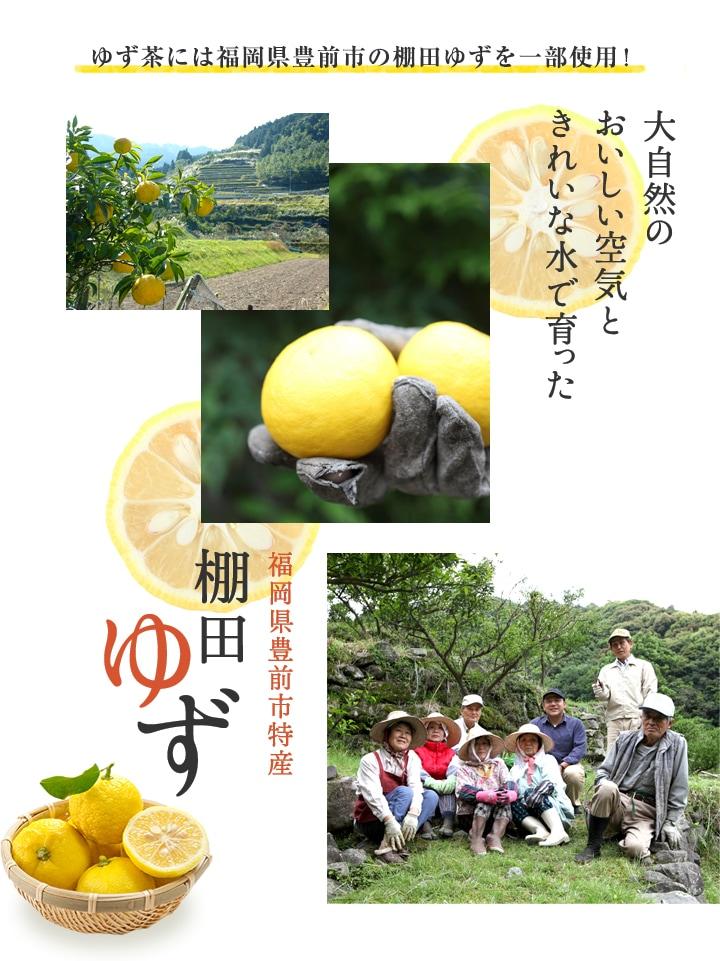 福岡県豊前市棚田ゆず一部使用 国産ゆず茶