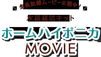 水耕栽培キットホームハイポニカ ぷくぷくMOVIE