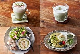 お抹茶アーモンドラテ、ROKU抹茶ラテ、抹茶パンケーキ、くるみと抹茶のポタージュ(カフェプレート)