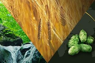 ダイヤモンド麦芽・欧州産アロマホップ・天然水