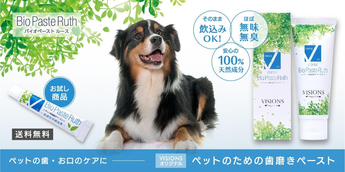 VISIONSオリジナル ペット用歯磨き B・P・R(バイオペーストルース)