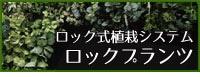 ロック式植栽システム ロックプランツ