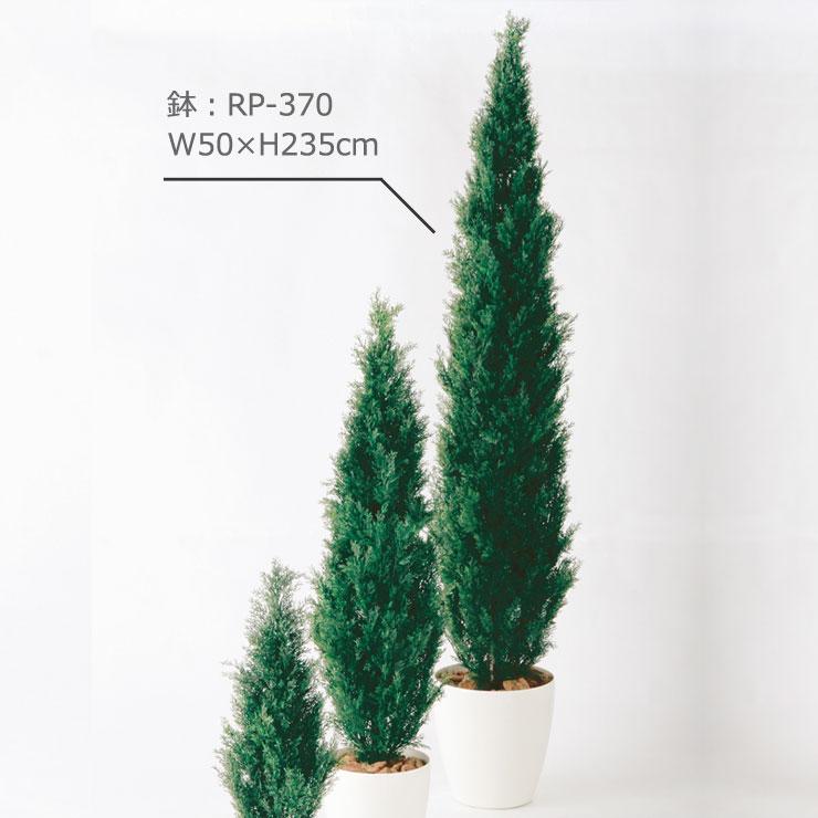 ブルーポイント235cm
