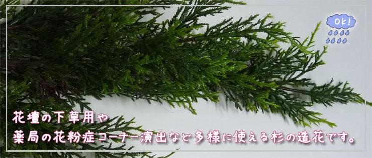 花壇の下草や花粉症コーナーの演出等に使える杉プラスチック