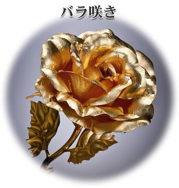 黄金バラ7本