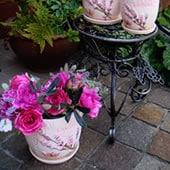 陶器鉢3set
