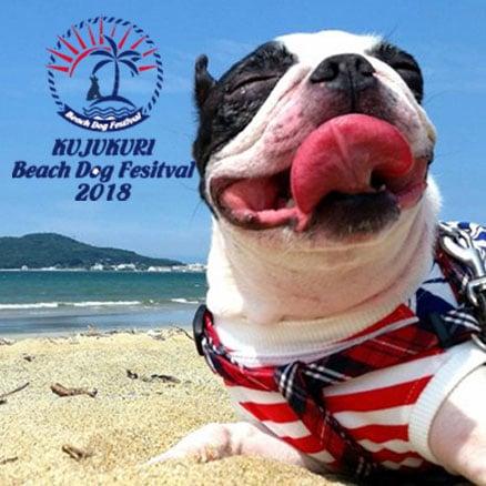 BEACH DOG FESTIVAL 2018