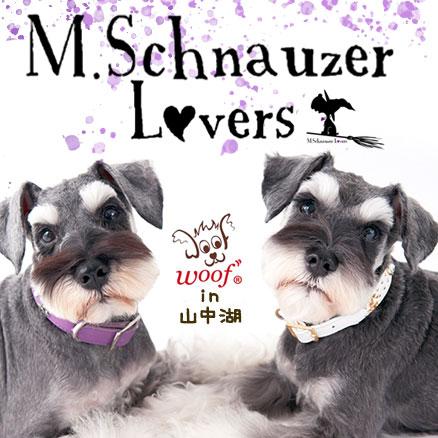 M.Schnauzer Lovers