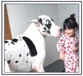シーロマ試用:小さなお子様にも安心