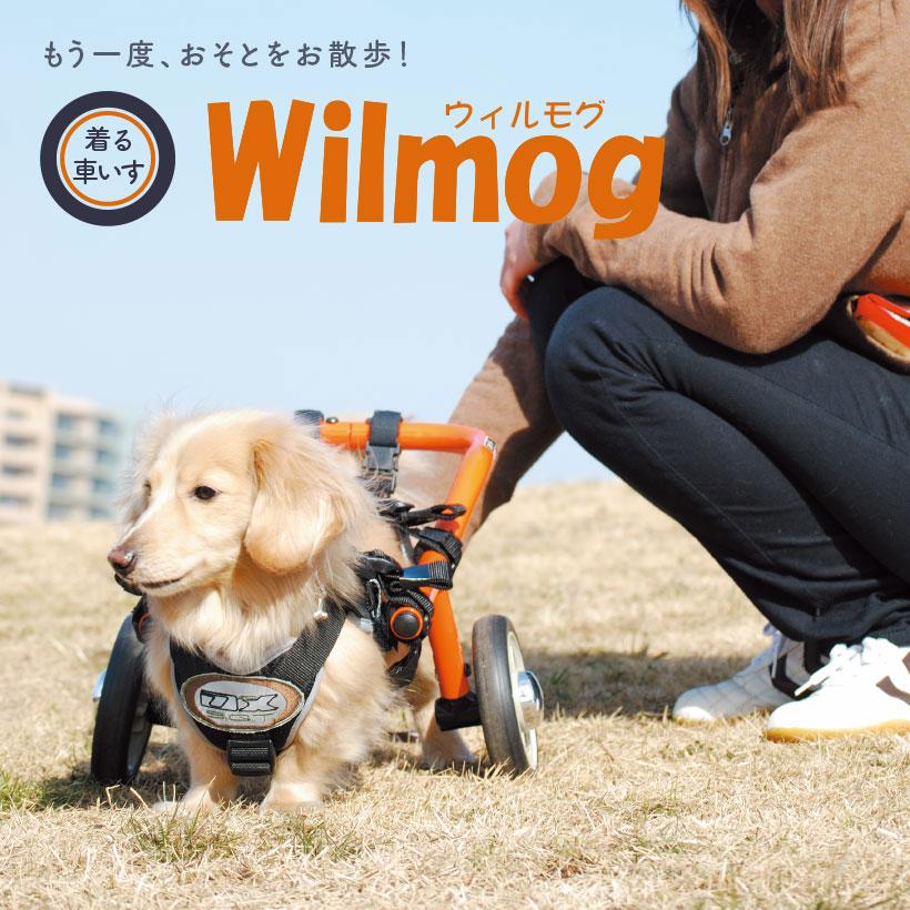 もう一度、おそとをお散歩! 着る車いす Wilmog ウィルモグ