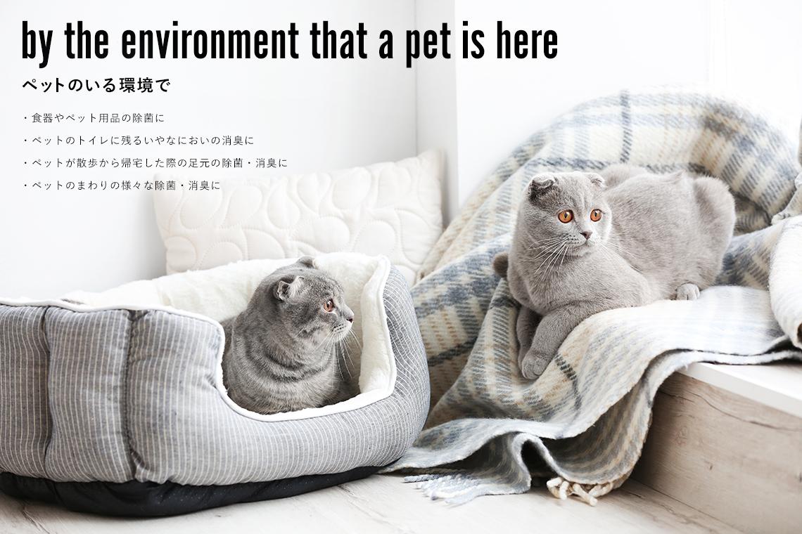 ペットのいる環境で