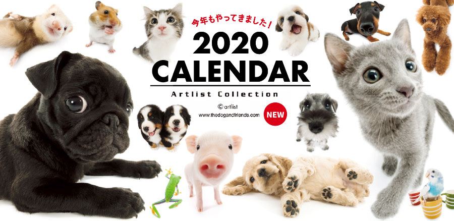 2019 THE DOG THE CAT カレンダー