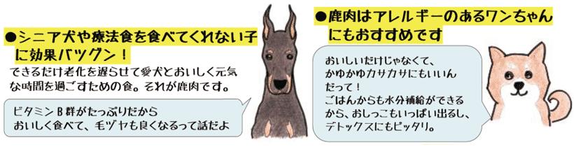 鹿肉はシニア犬やアレルギーのある子にもおすすめ