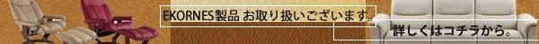 エコーネスco.jpページ