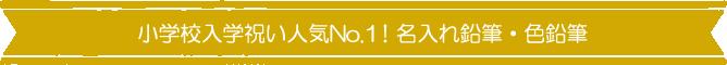 小学校入学祝い人気No.1!名入れ鉛筆・色鉛筆