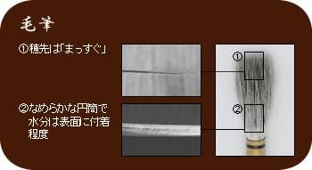 毛筆�穂先は「まっすぐ」�なめらかな円筒で水分は表面に付着程度