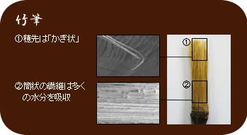 竹筆�穂先は「かぎ状」�筒状の繊維は多くの水分を吸収