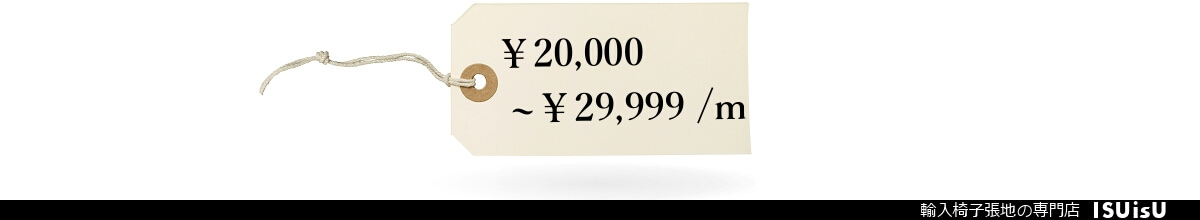 1m 29999円 いすの生地