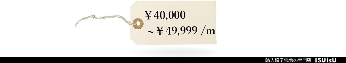 1m 49999円 いすの生地