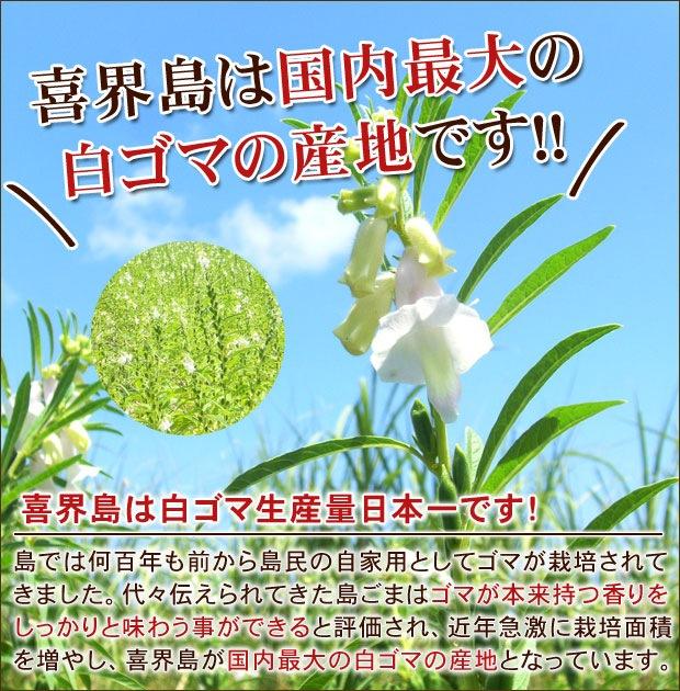 喜界島は国内最大の白ゴマの産地です!