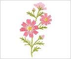 ミニガーゼ刺繍ハンカチ「13. 秋桜」
