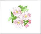 ミニガーゼ刺繍ハンカチ「11. さくら」