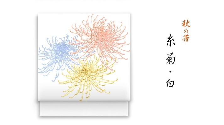 井澤屋 洗える帯 名古屋帯 秋の新塩瀬帯「糸菊」白地 菊柄
